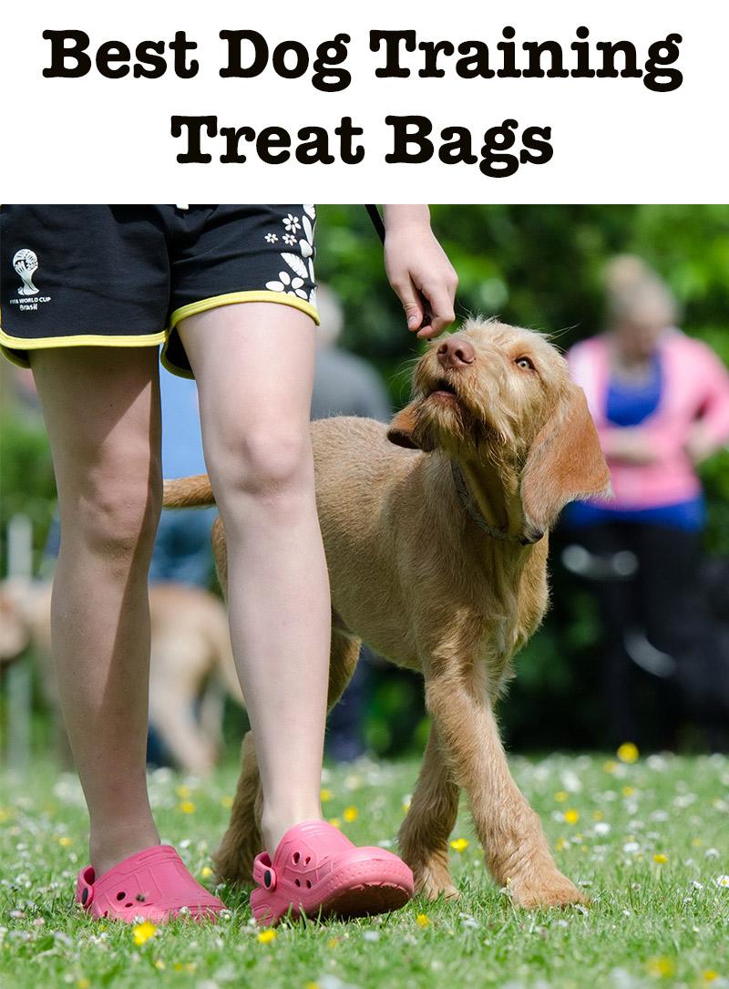 dog training treat bags