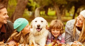 Best Family Dogs – The Top Pups To Share Your Home With