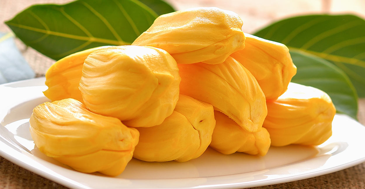 can dogs have jackfruit