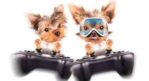 Video Game Dog Names – Paw-some Video Game Names For Your New Dog