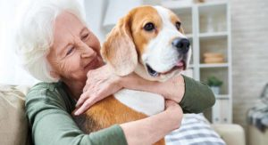 How Long Can a Dog Live with Hip Dysplasia: A Complete Guide