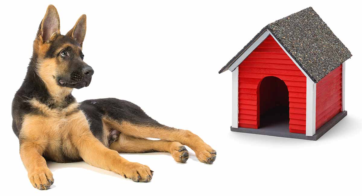 German Shepherd Dog House A Safe