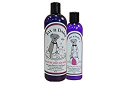 shampoo and lotion