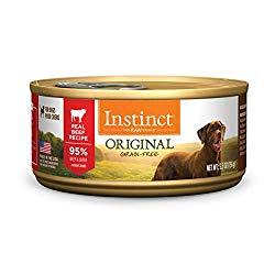 Best Dog Food For Dobermans