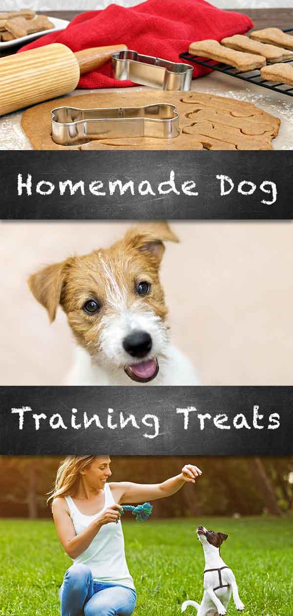 homemade dog training treats