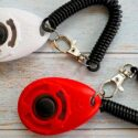 What is a dog clicker used for